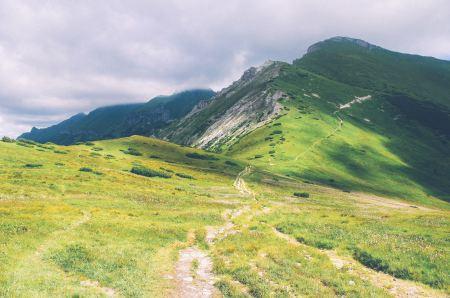 Verdant mountain landscape