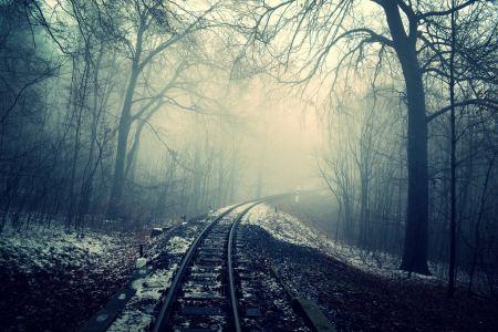 Railway in foggy forest