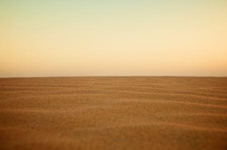 Landscape with plain