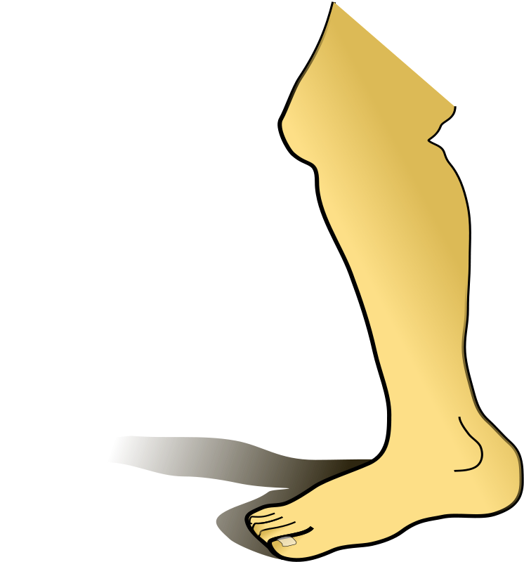 free clipart leg surgery - photo #7