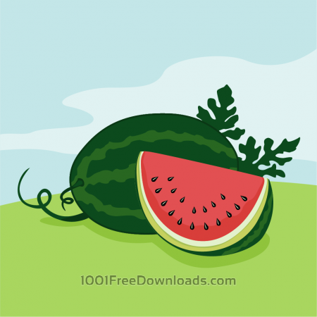 Free Vector illustration of Watermelon
