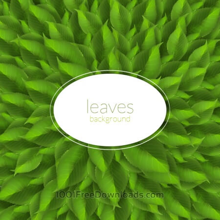 Green leaves texture with modern label